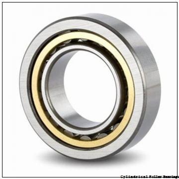 260 mm x 500 mm x 80 mm  260 mm x 500 mm x 80 mm  NACHI NF 256 cylindrical roller bearings