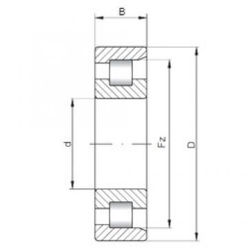 220 mm x 400 mm x 65 mm  220 mm x 400 mm x 65 mm  ISO NF244 cylindrical roller bearings