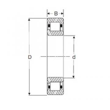 60 mm x 130 mm x 31 mm  60 mm x 130 mm x 31 mm  SIGMA NJ 312 cylindrical roller bearings