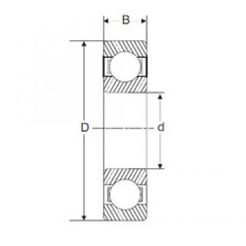 180 mm x 280 mm x 31 mm  180 mm x 280 mm x 31 mm  SIGMA 16036 deep groove ball bearings