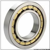 35 mm x 80 mm x 31 mm  35 mm x 80 mm x 31 mm  NACHI NJ 2307 cylindrical roller bearings
