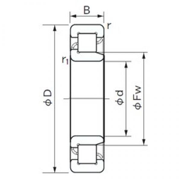 35 mm x 80 mm x 31 mm  35 mm x 80 mm x 31 mm  NACHI NJ 2307 cylindrical roller bearings #3 image