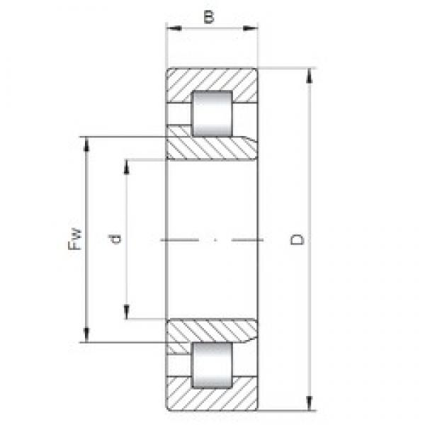 27,5 mm x 55 mm x 17 mm  27,5 mm x 55 mm x 17 mm  INA 712113810 cylindrical roller bearings #3 image
